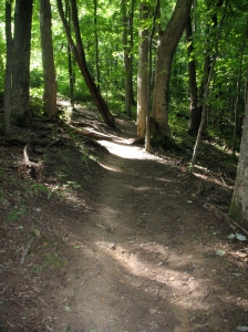 The trail is a 2.5 mile loop and usually takes about 40 minutes to complete.