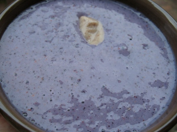 Blueberry Brazil Nut Protein Smoothie