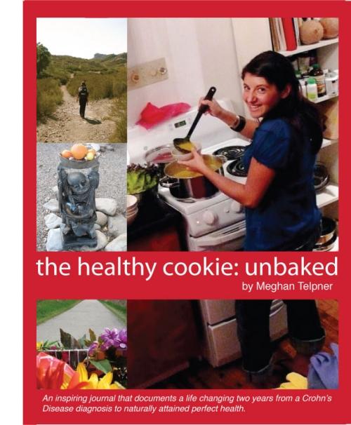 healthycookiecover_final22